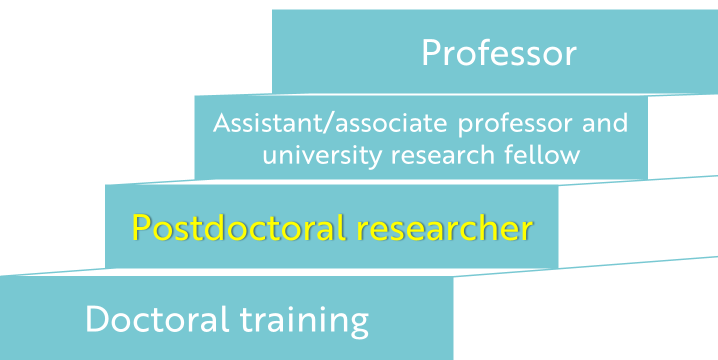 Four stages of a researcher's career