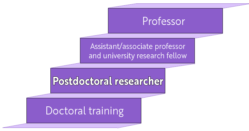 Four stages of postdoc career